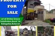 Divine Grace Subd., Burol 1st, Balagtas, Bulacan